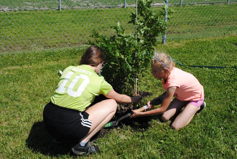 Don d'arbres aux citoyens